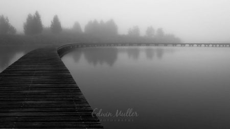Photo: Edwin Muller Boardwalk in the mist