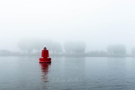 Photo: Edwin Muller Red bouy in a misty river